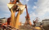 中国需求推动巴西农产品出口创纪录