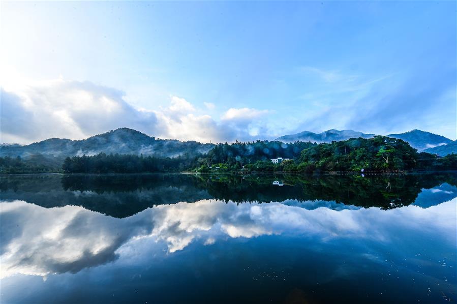 攝影師教你這樣拍海南熱帶雨林 感受堪比大片的視覺效果