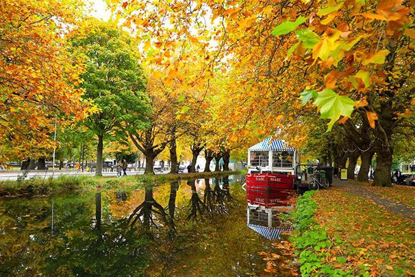 攝影師定格都柏林 秋色浸染色彩斑斕