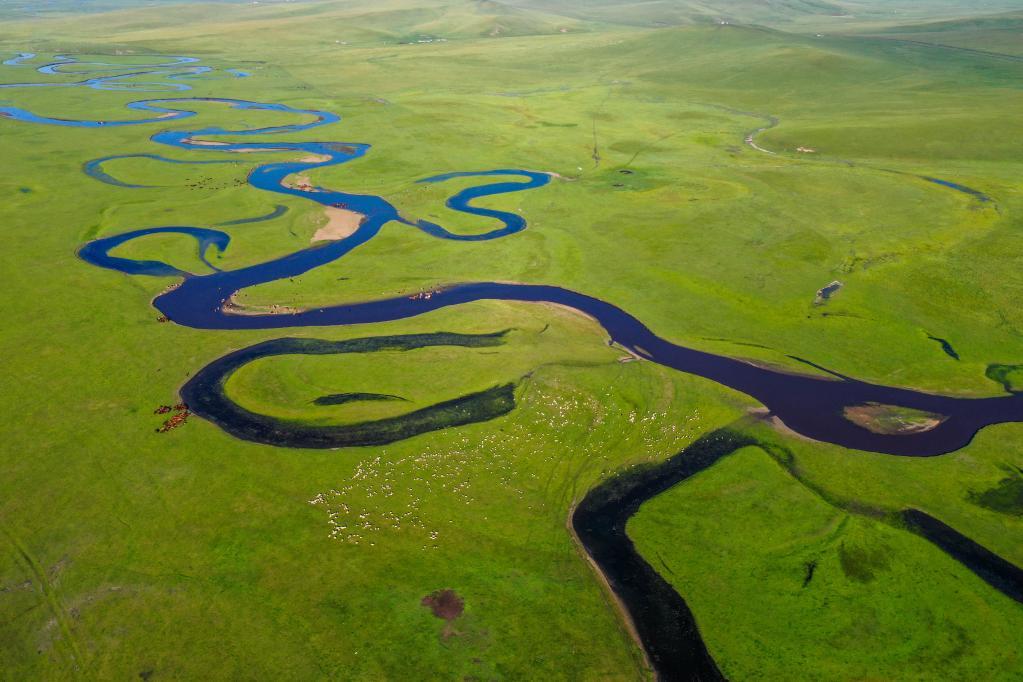 無人機航拍莫日格勒河 碧波粼粼景色美如畫
