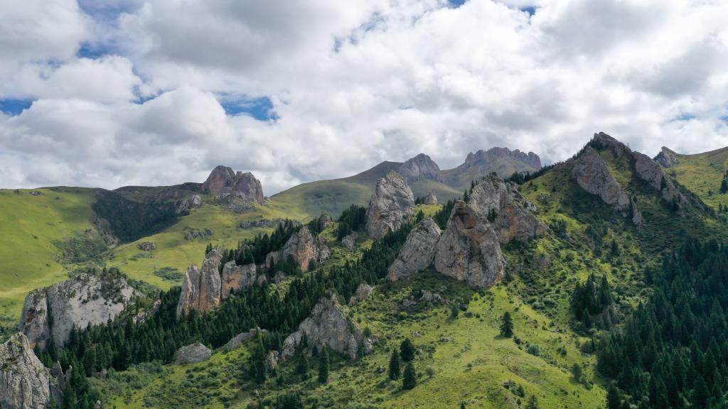 無人機飛閱則岔石林 遍地景如畫