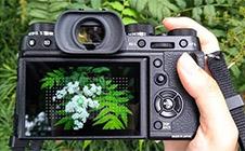 這兩種相機操作習慣,會決定你拍攝的成敗!