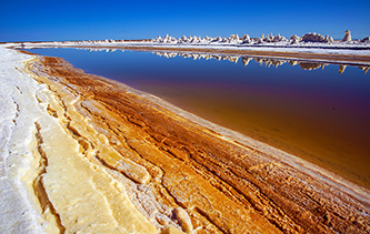 零距離感受鹽的世界 鹽湖蘑菇和鹽晶花大放異彩