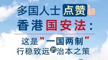 【圖解】多國人士點讚香港國安法