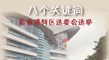 從八個關鍵詞看香港特區選委會選舉