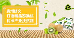 貴州修文:打造精品獼猴桃 找準産業扶貧路