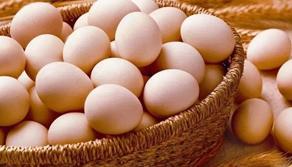 雞蛋、鵝蛋、鴨蛋 哪個更有營養?文章告訴你答案