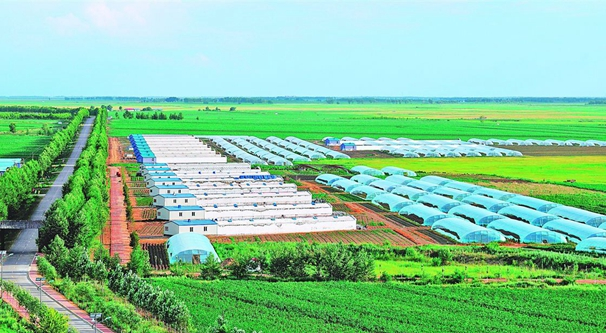 浙江健全食用農産品追溯體係 到2020年建成率逾90%