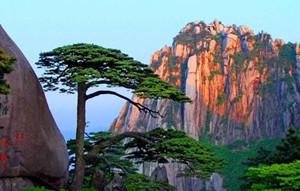 5G讓遊客縱覽黃山美景
