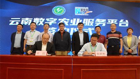 雲南省農科院、新華網共建雲南數字農業服務平臺