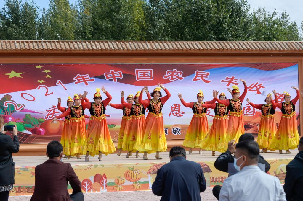 新疆:乡村振兴进行时 村美业兴旅游热