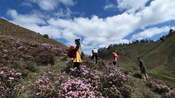 雲南蘭坪:山清水秀景色美
