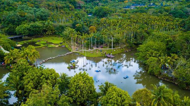 航拍海南保亭呀諾達熱帶雨林