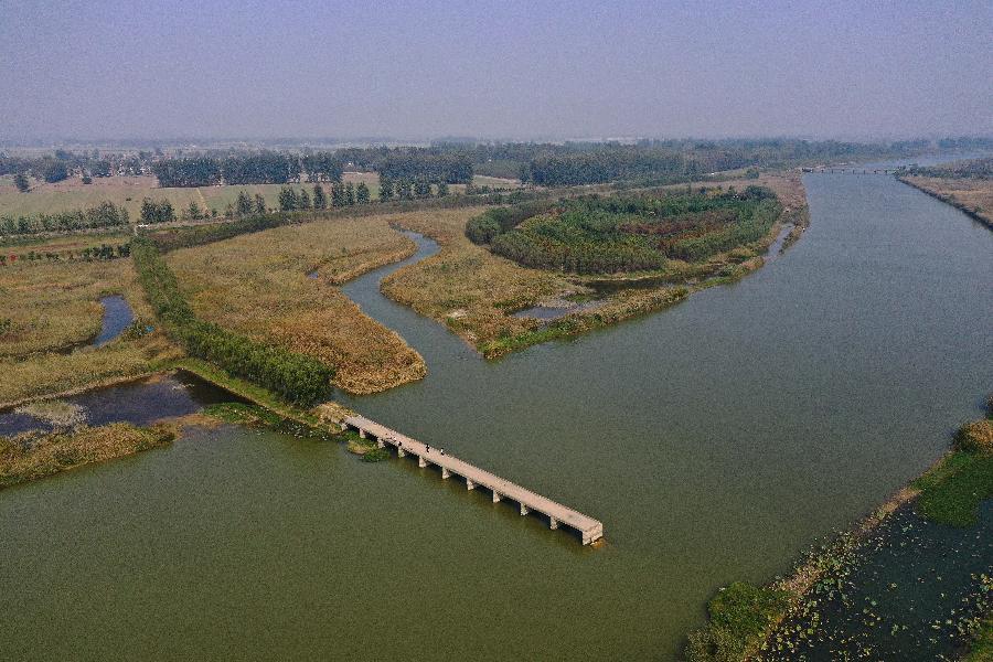 江蘇徐州:黃河故道變身濕地公園