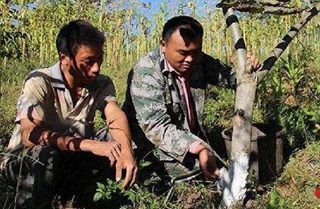 """畢世華:中緬邊境線上的""""活界樁"""""""