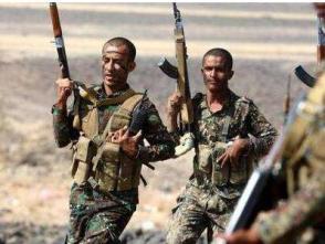 也門政府軍擊落一架胡塞武裝無人機