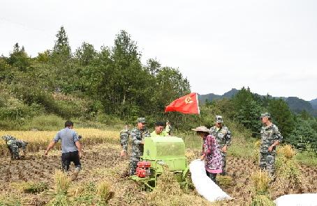 貴州福泉:迷彩綠勾勒出苗鄉最美秋收畫卷