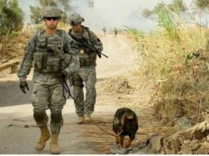 美防長突訪伊拉克討論反恐進展