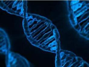 基因武器如何影響未來戰爭