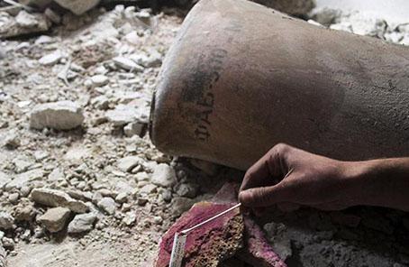 """禁化武組織調查團再次進入杜馬為調查""""化武事件""""採集樣本"""
