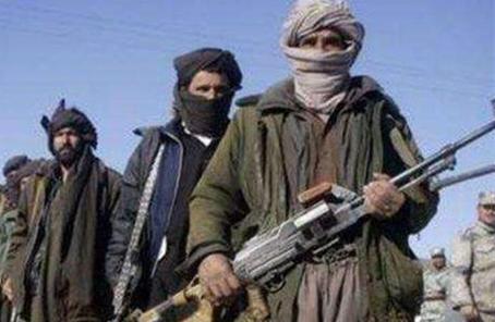外交部:對阿富汗政府延長同塔利班停火表示歡迎