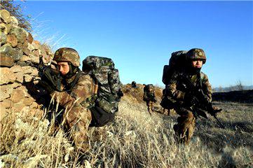 第80集团军某旅以技战融合锤炼作战能力