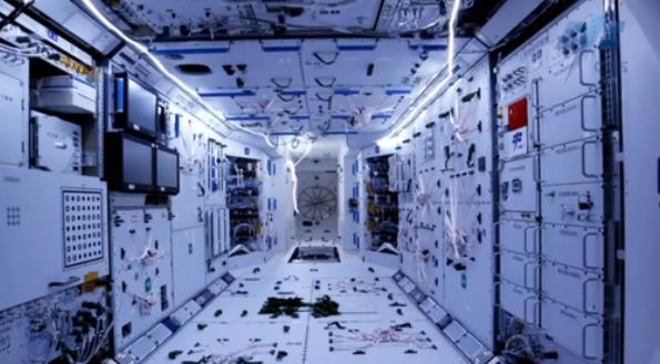 """中國3名航天員太空生活""""劇透"""":將在天上駐留3個月"""