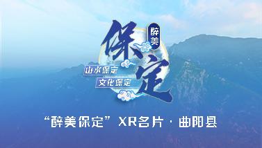 曲陽縣XR名片