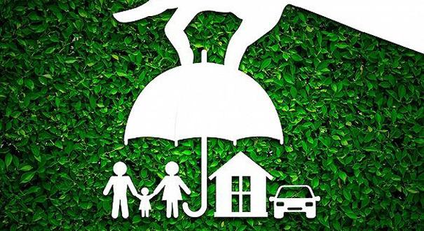 牌照發放或按暫停鍵 各路買家急尋保險收購標的