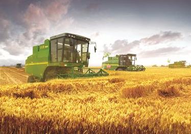 主流險資:2月重點關注農業板塊結構性機會
