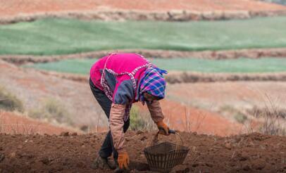 全力加強振興鄉村建設