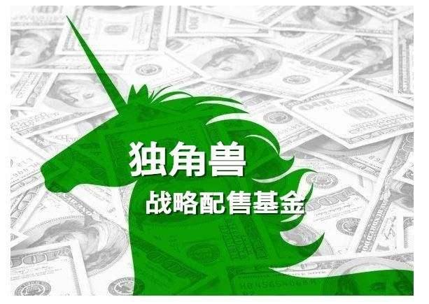 戰略配售基金募集規模上限或達200億元