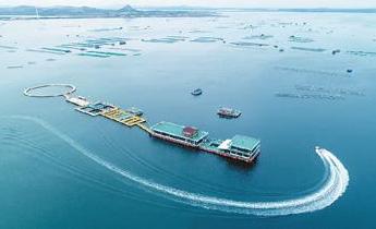 深交所:將加大海洋産業擬上市企業培育力度