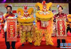 """""""文化中國·四海同春""""藝術團在馬來西亞演出"""