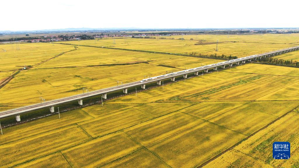 飞驰在千里沃野,看丰收中国