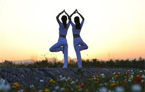 品花香 練瑜伽