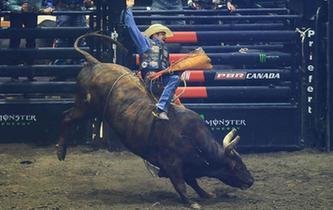 美國職業騎牛賽精彩亮相加拿大多倫多