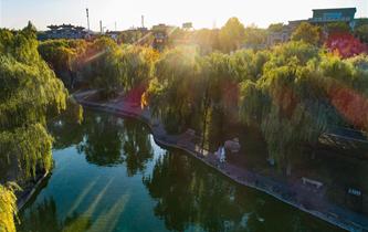 河北武安:城郊荒地變身生態公園