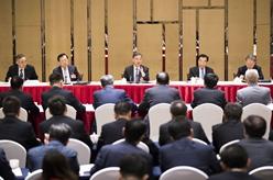 汪洋參加經濟、農業界委員聯組會討論