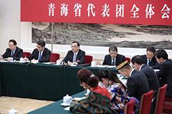 李克強參加青海代表團審議
