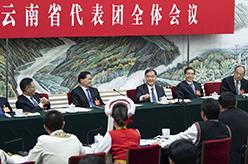 汪洋參加雲南代表團審議
