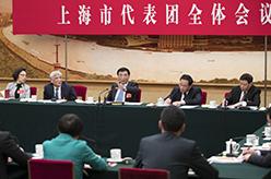 王滬寧參加上海代表團審議