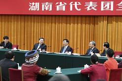 王滬寧參加湖南代表團審議
