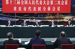 栗戰書參加重慶代表團審議