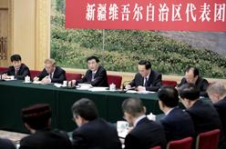 王滬寧參加新疆代表團審議