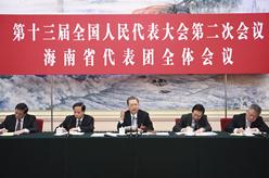 趙樂際參加海南代表團審議