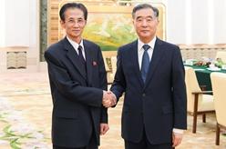 汪洋會見朝鮮祖國統一民主主義戰線中央委員會議長金完洙