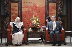 王岐山會見馬來西亞副總理旺·阿茲莎