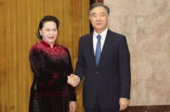 汪洋會見越南國會主席阮氏金銀