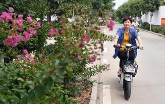广安市大力实施重点区域重点流域环境问题综合整治